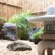 Detalhe do jardim japonês, no restaurante Momiji