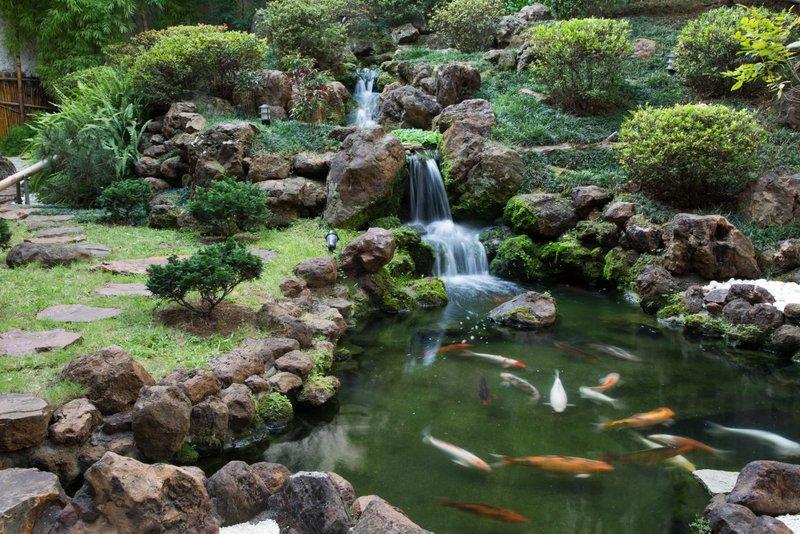 festa jardim japones : festa jardim japones:jardim japonês pode ser visto dos salões principais