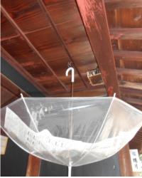 Um guarda-chuva foi colocado para que a sujeira do ninho de passarinho não caia nas pessoas que passam por ali