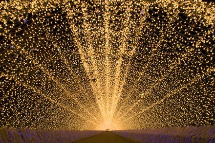 Túnel de luzes com lâmpadas em formato de flores