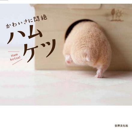 Capa do livro da editora Sekai Bunka