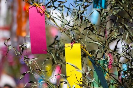 O pedido é feito em tiras de papel que são penduradas em bambu