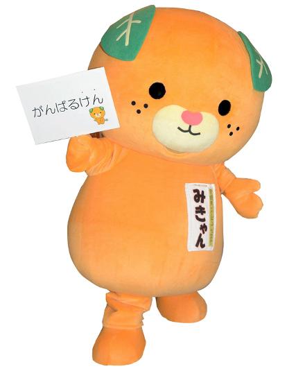 Mikyan, da província de Ehime, tem o nome em homenagem à especialidade local: a tangerina