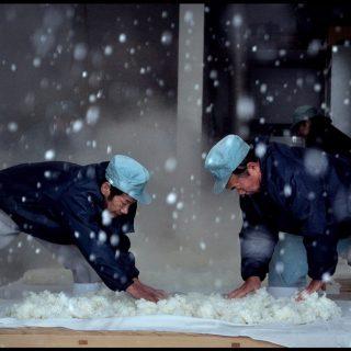 Documentário Birth of Sake