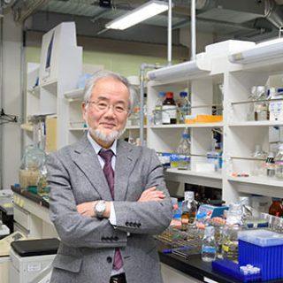 Foto: Instituto de Tecnologia de Tokyo