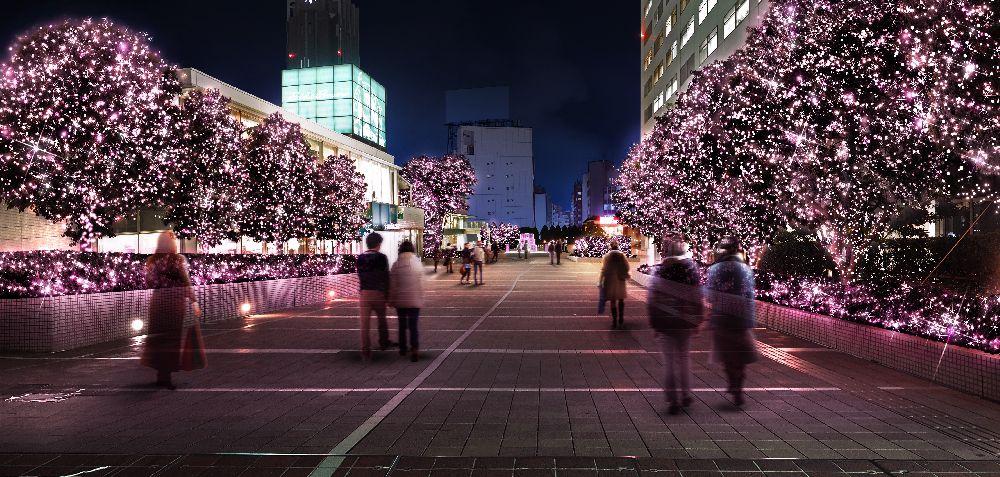 nihon-kankou.or.jp
