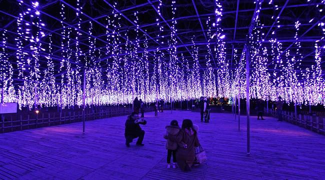 Festival de Luzes no parque botânico de Ashikaga