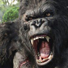 O novo King Kong está chegando