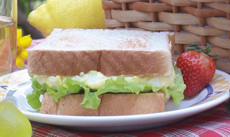 piquenique-sanduiche-full