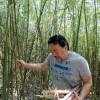 Shin Koike buscando brotos de bambu para o cozido Nimono, feito com caldo dashi bem denso, lascas do peixe bonito e alga konbu