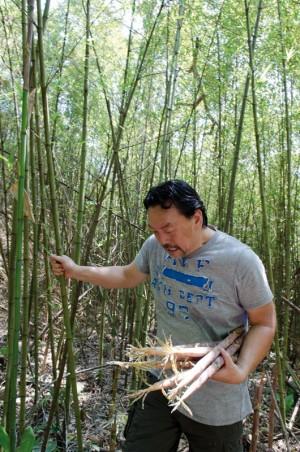 eatrip-bambus-gl