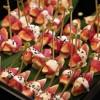 Sashimi de filé mignon com figo, tarê de gergelim
