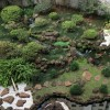Vista aérea do jardim japonês do restaurante