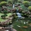 O jardim japonês pode ser visto dos salões principais