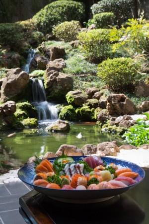 shintori_sushi