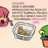 Dicas Ilustradas: Conservando alimentos