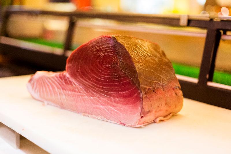 atum bluefin