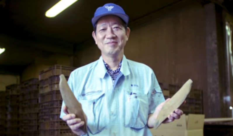 Vídeo: Katsuobushi, as lascas de peixe
