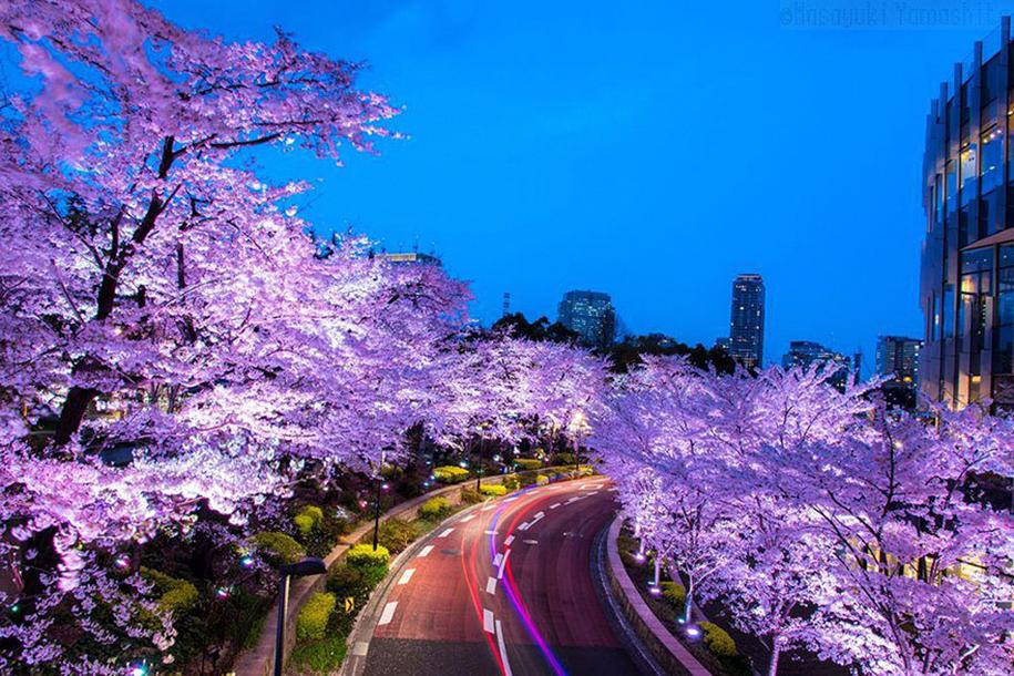 Foto de Masayuki Yamashita em Minato-ku, Tokyo