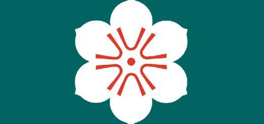 Bandeira da província de Saga