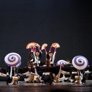 festival da cultura japonesa