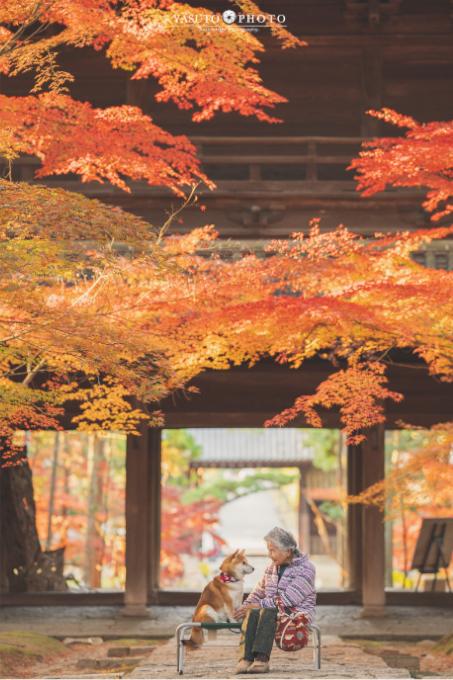Yasuto Photo